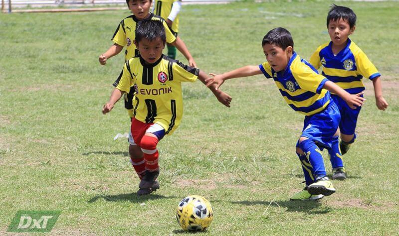 Programación de los torneos Creciendo con el Fútbol y Copa Federación en Arequipa
