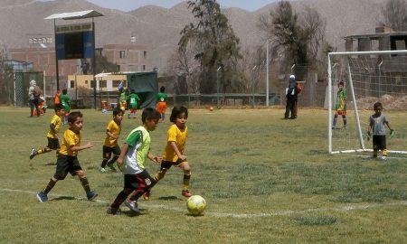 Faltan cuatro fechas para el final de Creciendo con el Fútbol.