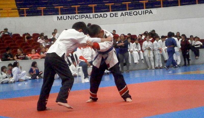 Niñas y niños judocas compitieron por la Copa Ccorito