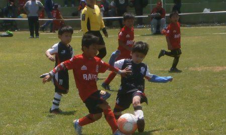 Programan semifinales de Creciendo con el Fútbol y Federativa. Además reprograman partido de Guerreros vs. Ínter en la sub-8.